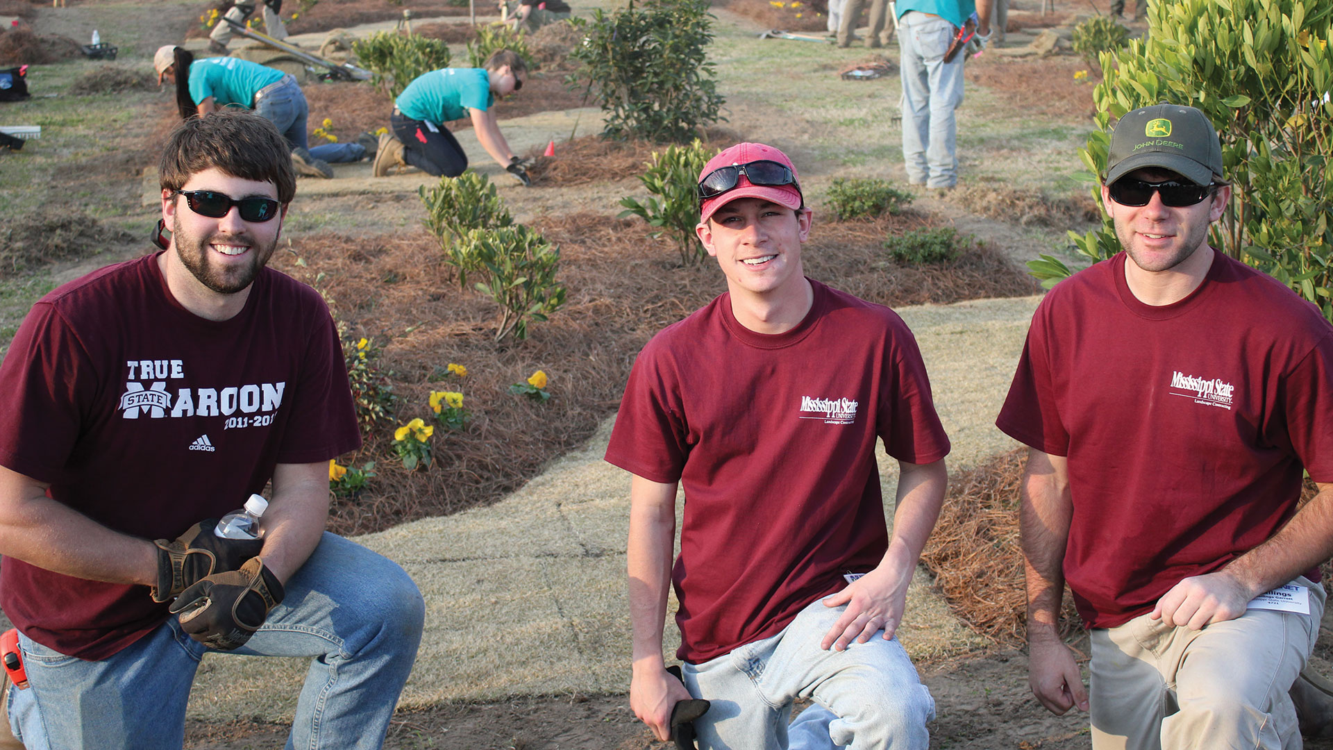 Landscape Contracting and Management